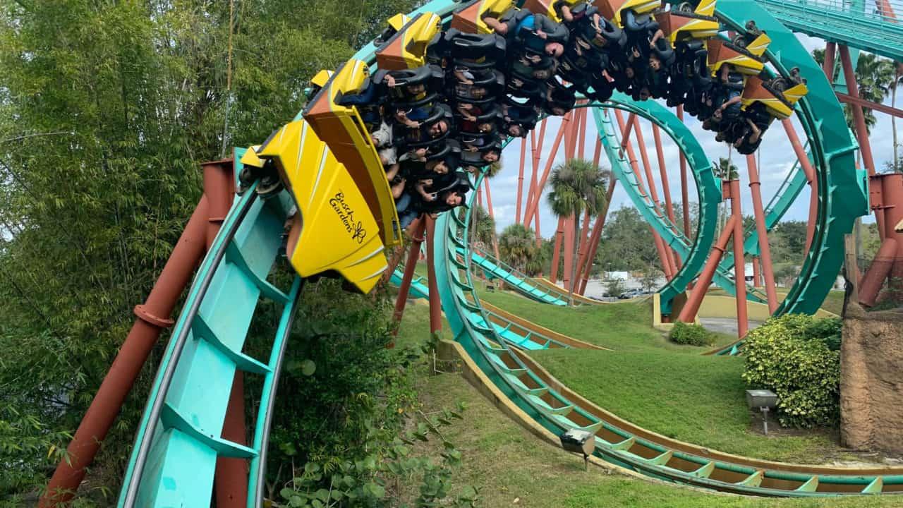 Busch Gardens in Tampa, FL